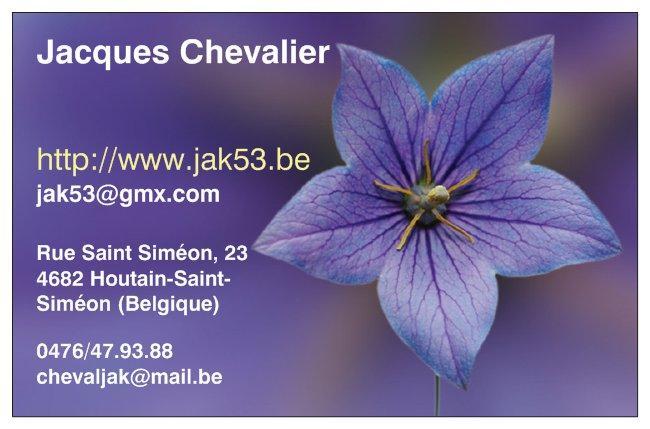 Ma carte de visite, les adresses changent, la fleur reste !