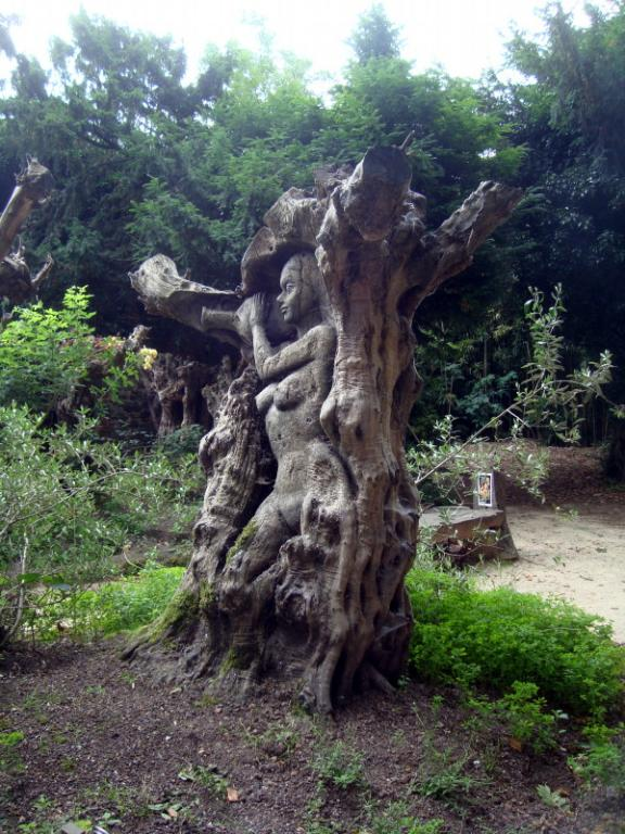 Des humains dans les racines - Pairi Daïza - 19 juin 2018