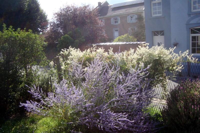 Le blanc des fleurs de l'arbre à Paolo et le bleu de nos plants de Perovskia